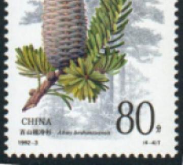 Zeng Xiaolian